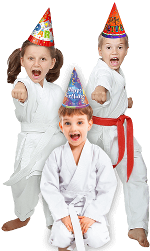 Martial Arts Birthday Party for Kids in Kansas City MO - Birthday Punches Page Banner